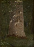 "Christen Dalsgaard: ""Solplettet bøgestamme"" (1852)"